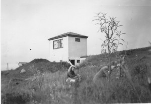 Vidir_1943_2